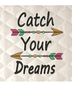 Catch your dreams arrows